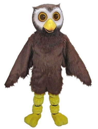 sc 1 st  Everything Owl & Best Owl Costumes for Kids and Adults!