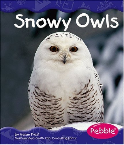 About Snowy Owls