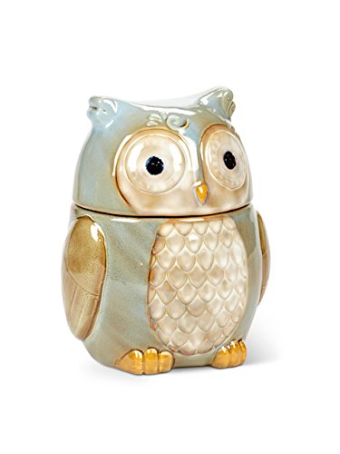 Cute Turquoise Owl Cookie Jar