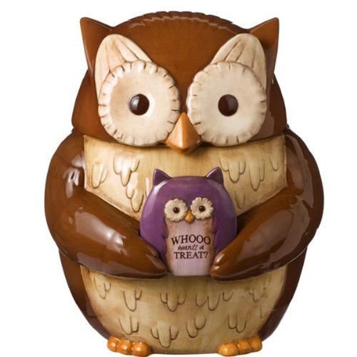 Beautiful Owl Shaped Cookie Jar