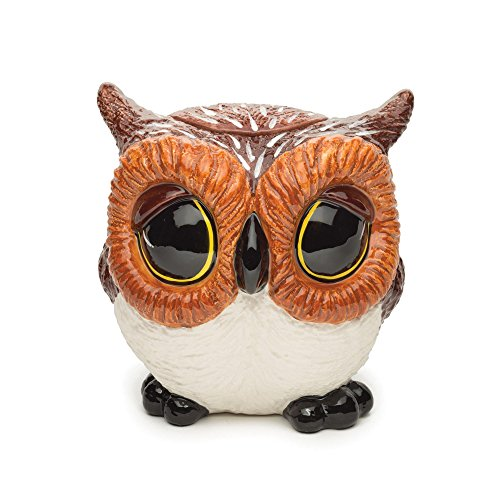 Best owl kitchen decor ideas Owl kitchen accessories