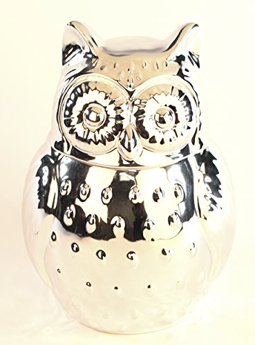 My Top 10 Most Favorite Owl Cookie Jars For Sale