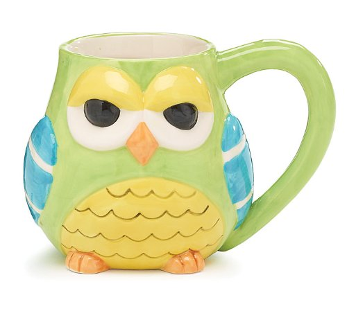 Sleepy Owl Coffee Mug