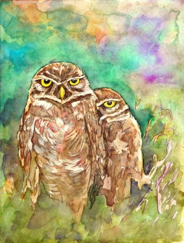 owls in love painting