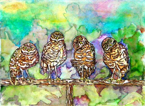 Cute Owl Babies Painting