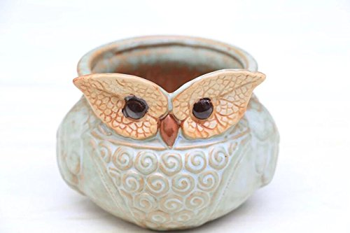 Leaf Shape Eye Owl Design Flower Planter
