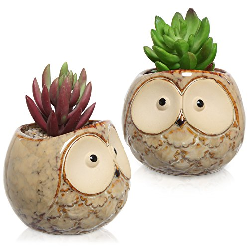 Tiny Owl Flower Pots Decorative Planters
