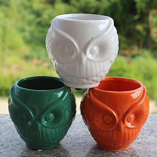 Colorful Owl Design Ceramic Flower Pots